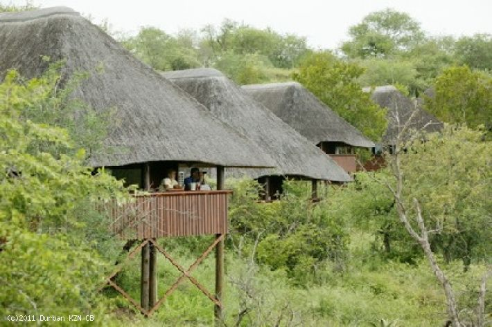 Pongola Game Reserve - Nkwazi Lodge